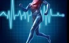 Diabetes tipo 1: aspectos relevantes para diseñar un programa de entrenamiento de resistencia (Parte I)